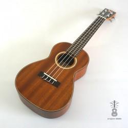 Mahimahi Ukulele concert MC-3X solid mahogany