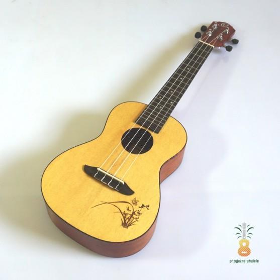 Ortega Ukulele koncert Świerk RU5