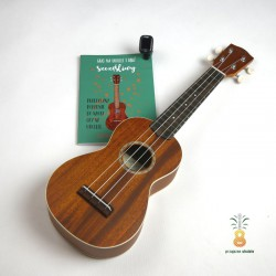 Mahimahi Ukulele soprano MS-ST2 lity top