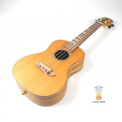 Ortega Ukulele concert Timber RUTI-CC solid cedar